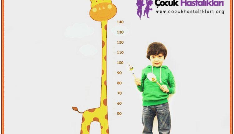 Çocukların Boy Ölçümü Ve Boy Ölçer Stickerler